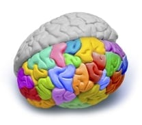 Controlling the Subconscious Mind brain image
